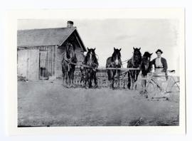 Mr. and Mrs. H. Andrew standing with five horses and a bicycle in front of their house