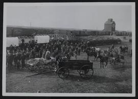 Barr colonists at Saskatoon with wagons and buggies