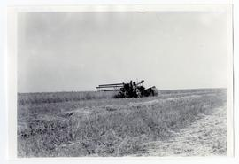 Tractor pulling an early Holt swather