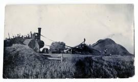 A Waterloo outfit with wing feeders on a farm near Lumsden