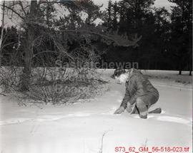 Bob Folker - Fort A La Corne - Examines Deer Tracks
