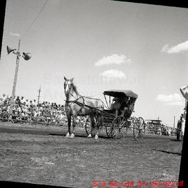 [Saskatoon - Pion-Era Horse-drawn wagons]