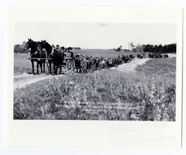 A large group of landseekers travelling by horses and buggies along a road
