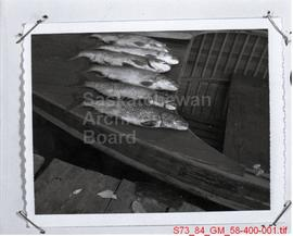 Copy of Polaroid Fishing Pictures